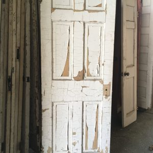6-Panel Vertical Door
