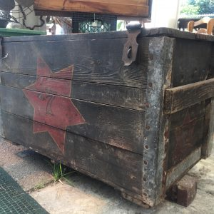 Antique Americana Painted Wooden Trunk